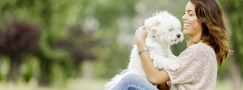 FACTORS TO CONSIDER WHEN ADOPTING A DOG