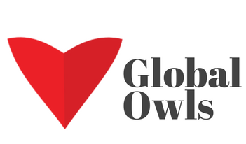 Let's Meet Raul Tiru From GlobalOwls