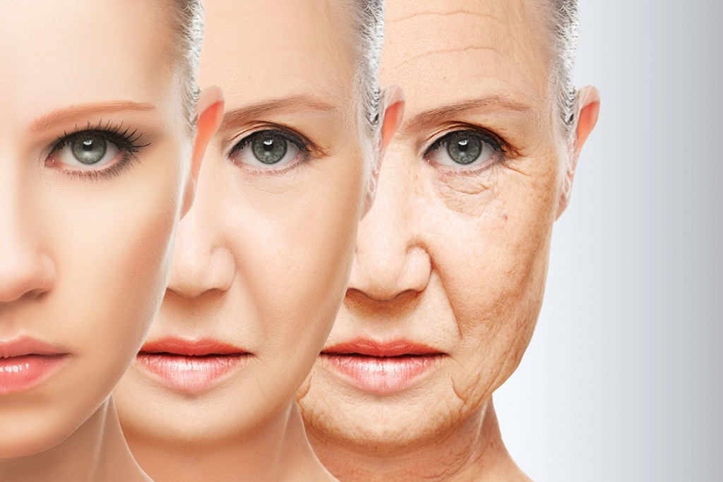 Understanding How Skin Ages