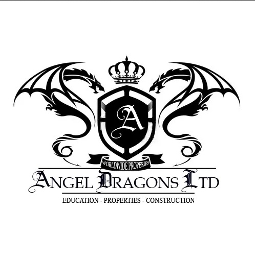 Interview with the CEO of Angel Dragons