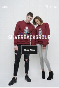 Everything you need to know about clothing brand Silverback Group